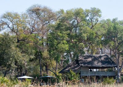 Okavango tented bush camp botswana safari